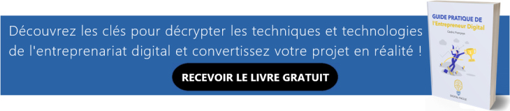 Guide pratique de l'entrepreneur digital